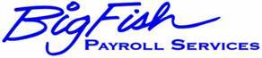 Big Fish Payroll Service